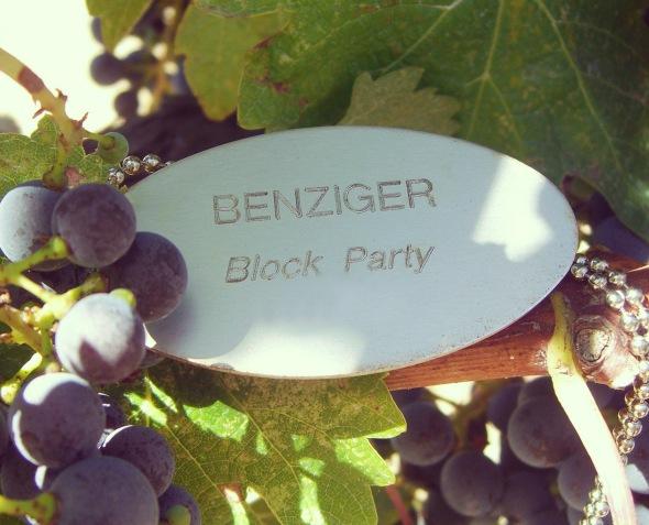 Block Party Vine Tag